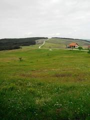Little house (jecadim) Tags: mountain nature forest trekking spring hiking serbia meadow srbija divčibare