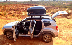 Field Car - NE Brazil Birding