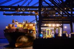 Dimitris Y DST_6813 (larry_antwerp) Tags: psa terminal container dimitrisy zim msc mediterraneanshipping antwerp antwerpen       port        belgium belgi          schip ship vessel        schelde