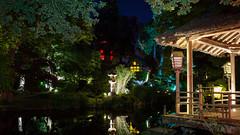 DSC05475 (regis.verger) Tags: temple zen nuit parc nocturne asiatique vgtal maulvrier