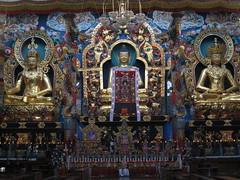 IMG_2469 (Sasha India) Tags: india buddhism karnataka indien hindistan buddhismus 印度 भारत littletibet הודו 인도 இந்தியா الهند буддизм هندوستان индия ινδία індія карнатака հնդկաստան אינדיע อินเดีย ભારત ინდოეთში