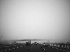 Can't see anything. (Melissa Kumaresan) Tags: massivedork vsco vscocam iphone iphone5s dubai mydubai road roadside cars monochromatic outdoor fog foggy smog mist misty city streets