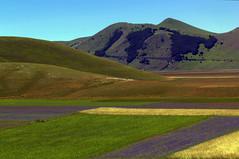 I colori di castelluccio (M.a.r.t.Y) Tags: castelluccio fioritura norcia lenticchie summer estate landscape panorama