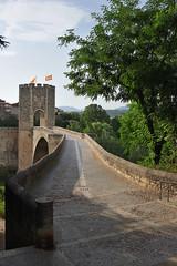 Puente de Besal (TerePedro) Tags: besal gerona espaa puente bridge pont medieval