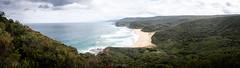 Garie Beach (Piyush Bedi) Tags: garie beach australia nsw newsouthwales royalnationalpark rnp panorama panoramic landscape outdoors nature bush bushwalking trail waves sydney fuji fujifilm xt1 outdoor