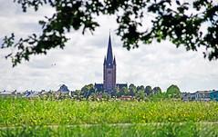 Mariestads domkyrka (johansson110) Tags: mariestadsdomkyrka mariestad cathedral ekudden sweden kyrktorn summer sommar