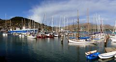 Dampier Bay Marina. Lyttleton. (Bernard Spragg) Tags: marinaportoflyttleton port harbour mooring vessels ships marine lumixfz1000