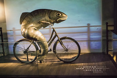 Fish on a Bike Guinness Promotion (Susan.Johnston) Tags: guinness advertising fishonbicycle cosmostour ireland dublin guinnessstorehouse