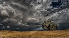Half hearted rainbow (BlueberryAsh) Tags: rainbow storm clouds nikond750 weather stormscloudssunsetsunrise farm