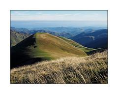 Un bout de Cantal dans un morceau de Pyrnes (eric_47) Tags: montagne pyrnes aquitaine paysage randonne france pyrnesatlantique moutain landscape hiking