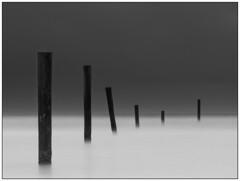 Posts #2 (Nordtegn) Tags: sea bw mer white black monochrome landscape mono wadden big meer noir waves zwartwit monochromatic norderney nb lee sw monochrom posts paysage schwarzweiss vagues landschaft blanc friesland stopper wellen zw wattenmeer pfähle vasière