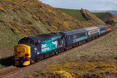 37423 'Spirit of the Lakes' 5Z63 (Cumberland Patriot) Tags: english electric train training coast three spirit lakes rail railway trains class line crew type mk2 passenger 37 northern ee services coaches direct constable the drs cumbrian 374 6996 5995 37296 37423 of 17159 5z63 d6996
