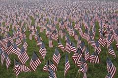 Field of Flags (Read2me) Tags: blue red usa white stripes flag thumbsup bostoncommon memorialday gamewinner 2thumbsup challengeyouwinner friendlychallenges thechallengefactory superherowinner pregamewinner challengeclubwinner perpetualchallengewinner