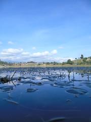 Hermoso lugar para acampar y estar en contacto con la naturaleza!! Quiche, Guatemala!! camping, nature, quiet, trees, reflection, clear, blue, clouds, water Laguna, il campeggio, la natura, tranquilla, alberi, riflessione, chiaro, blu, nubi, acqua  (Hurko) Tags: flowers nature colors lagos beautifull reflejos nationalgeographic indescribable photooftheday prensalibre visitguatemala instagram like4like instatravel fingerprintofgod therealguatemala mytripmyadventure shutterguatemala guatezoom guatemalamegadiversa guatemalatrasmilente whpmydailyroute guatemala502 quelindaguateqlg exploraguate retoinstagrampl lacapsuladeltiempopl milugarfavoritopl travellinglovers latimojongmountain