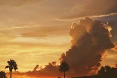 Florida (nowevlahutin) Tags: travel orlando florida eeuu