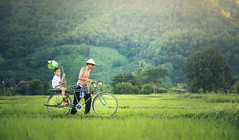 DUN_5798 (Bugphai ;-)) Tags: son father bike beach roundabout coast relations hands two fun decline life happiness relatives local dad seat summer outside vietnam laos myanmar cambodia sun walk love dark parents family pleasure childhood sunset joy sky child water silhouette party man flight bicycle little game thai happy