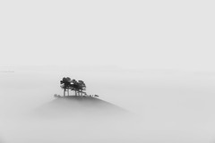 Colmers hill B&W (Jonny_Royale) Tags: uk longexposure autumn summer england mist west fog sunrise landscape coast spring oak path south hill national dorset trust tress jurassic bridport colmers leegradfilters jonnyroyalephotography