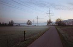 (xbacksteinx) Tags: ricoh500gx dmparadies200 c41 cheap film testroll early morning path track germany fall mist misty mood moody grain grainy