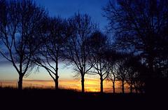 sundown (estherfemmigje) Tags: sony a100