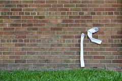 Sweat Socks. (Urban Camper.) Tags: socks minneapolis heatwave sweatsocks wall minneapoliswalls twincities captureminnesota brickwall brick grass streetphotography
