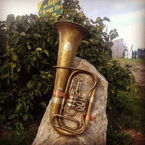 #kulm #puch #tuba #schnitzlwirt #stubenbergsee #discoveraustria #österreich #musik #kürbiskernschnitzel #gasthof
