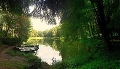 bitte einsteigen (barmicity) Tags: landschaft landscape edenkoben pfalz pflzerwald hilschweiher weiher ruderboot trees bume outdoor wald forest idylle malerisch pittoresk