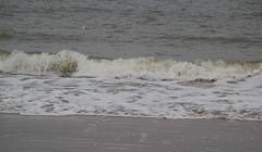 IMG_1073 (EadaoinFlynn) Tags: curracloe beach sea ireland irishsea wexford