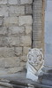Panthera tigris (alice.decoorebyter) Tags: beauty beautyinnature zoo cute beautiful wild wildanimal wilderness naturepics naturephotograph naturalworld animal animals animaux nature wildlife félin félins félidé félidés tigre tigres tigreblanc tigresblancs tigredesibérie tigresdesibérie