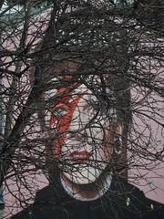 Ziggy Stardust (mikecogh) Tags: collegepark davidbowie mural publicart branches ziggystardust streetart