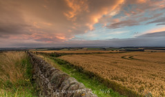 On The Wall (Steven Peachey) Tags: canon sky landscape wall northumberland clouds farmland ef1740mmf4l canon6d leefilters lee09gnd lee06gnd stevenpeachey lightroom5