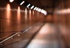 Ravenswood Exit (Jovan Jimenez) Tags: ravenswood entrance exit eosm3 eos m3 canon nikkor nikon 50mm f12 orange walkway ramp metra station train lights light night bokeh bokehful tiltshift tilt shift fmount apsc mirrorless rich color hue wall tile rail