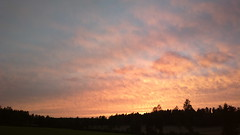 21.45 Hanko Hop 2016 - sunset between Kauklahti & Kirkkonummi (hugovk) Tags: hvk cameraphone uploaded:by=email 2145 hanko hop 2016 sunset between kauklahti kirkkonummi 2145hankohop2016sunsetbetweenkauklahtikirkkonummi uusimaa finland geo:region=uusimaa geo:country=finland geo:locality=luoma geo:county=helsingin luoma helsingin exif:flash=offdidnotfire exif:exposure=1100 camera:model=808pureview exif:isospeed=100 exif:aperture=24 meta:exif=1472184081 camera:make=nokia exif:orientation=horizontalnormal exif:exposurebias=0 exif:focallength=80mm nokia 808 pureview carlzeiss nokia808pureview hugovk summer august kes