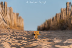 going to the beach (Rainer Preu) Tags: nikon nikonshooters digital d300 frankreich sdfrankreich france valrasplage beach plage strand sand meer sea danbo danboard holz wood natur naturephotography nature