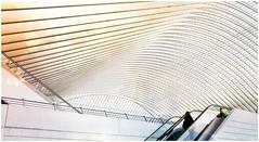 """Fascination calatravienne 7"", Gare des Guillemins de Lige, Belgium (claude lina) Tags: station architecture belgium belgique gare santiagocalatrava lige wallonie graphisme provincedelige garedesguilleminslige"