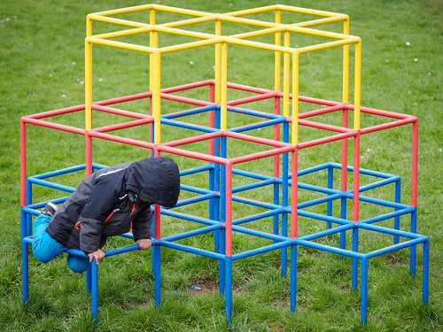 077/365: Climbing Frame