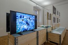 Endstation Meer? @ Naturkundemuseum