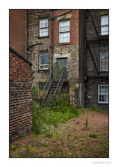 Back Yard Escape (Seven_Wishes) Tags: newcastleupontynenortheast buildings redbrick fireescape weeds overgrown stairs metalstairs drainpipes windows reflections grim grungy photoborder architecture securitylight newcastleupontyne tyneandwear uk canoneos1dmarkiv canonef24105mmf4lis decay rot textures lowkey 2015