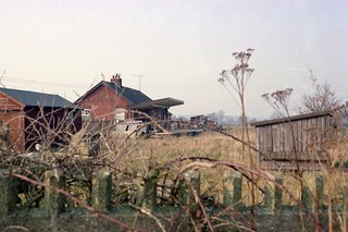 Tipton St Johns station, 1982