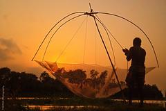 Fishing at sunset (Tarek_Mahmud) Tags: sunset fishing gazipur 4s tmp iphone tarek trk mhd mahmud tmphotography bangladesg tarekmahmud trkmhd