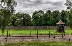 Vigilando el campo (Perurena) Tags: torre torreta tower puestodevigilancia vigía centinela soldado alambradas vallas electricidad encerrados campodeconcentración judios nazis jews auswitch poilonia