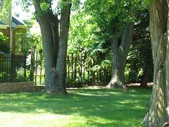 Where The Iron Meets The Wood (ilgunmkr - Thanks for 4,000,000+ Views) Tags: fencefriday fence ironfence woodenfence illinois peotoneillinois willcountyillinois hff enjoyillinois