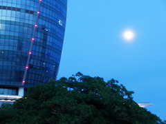Early moon (Roving I) Tags: fullmoon sky trees architecture towers localgovernment administrationbuilding nature danang vietnam