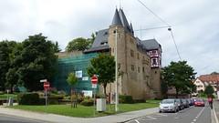 Burg von Alzey