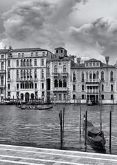 haunts me (littletinperson) Tags: bw bn venezia venice italia italy dorsoduro salute gondole boats canalegrande hauntsme littletinperson