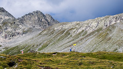 PM200744_medium_1900 (ThomasKrannich) Tags: austria carinthia grassland hiking mountains wanderlust osnabrcker htte hohe tauern nationalpark national park krnten sterreich