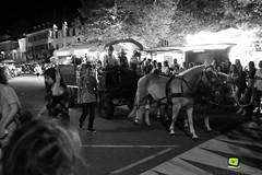 Corso-Fleuri-Selestat-2016-90.jpg (valdu67photographie) Tags: alsace corsofleuri selestat 2016 nuit international basrhin expositions fanabriques fanabriques2016 lego rosheim visite