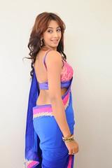 South Actress SANJJANAA PHOTOS SET-2 (13)