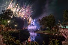 Fireworks Friday - Wishes (MattStemerman) Tags: wishes d750 nikon waltdisneyworld disney magickingdom fireworks wdw cinderellacastle disneyworld