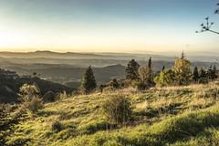 Escape (sanshm) Tags: barcelona sunset sky sun green primavera nature field landscape spring spain quiet peace paz tranquility paisaje catalonia bosque montserrat softlight tranquilidad