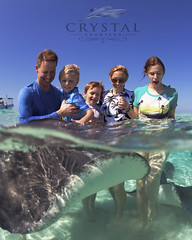 Stingrays in Cayman (crystal.charters) Tags: city family blue sea sun white water bar swimming swim fun island happy photography islands boat photo sand perfect paradise ray feeding crystal outdoor stingray turquoise sting sandbar grand atlantic clear southern half waters caribbean cayman rays feed stingrays charter charters